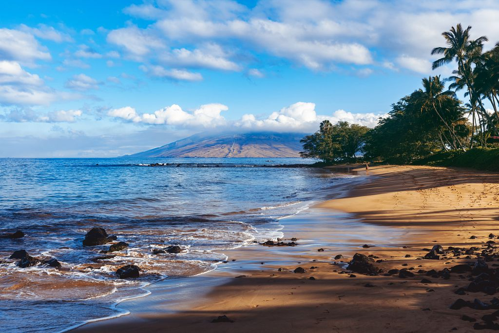 Maui Mornings